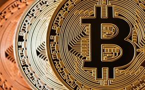 Картинка монеты, coins, bitcoin, биткоин, cryptocurrency, btc