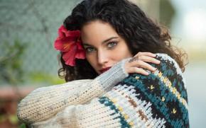 Картинка взгляд, девушка, поза, свитер, Jayma javier, Isabel Corpas