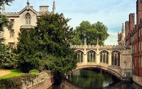 Картинка Великобритания, England, Мост Вздохов, Кембриджский университет, Saint John's College, Cambridge University, Bridge of Sighs, колледж …
