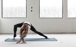 Картинка tattoos, female, workout, yoga