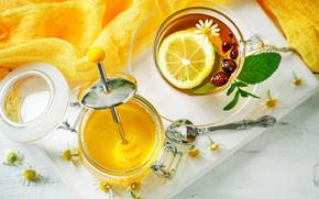 Картинка ромашка, мед, чашка, травы, душистый