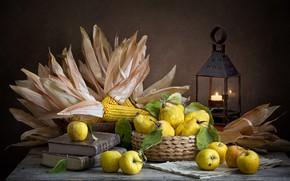 Картинка темный фон, яблоки, еда, кукуруза, фонарь, посуда, фрукты, натюрморт, композиция, айва