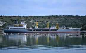 Картинка чайки, танкер, севастополь