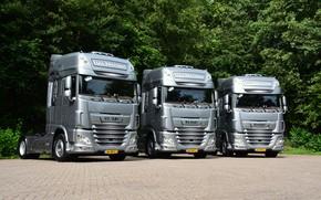 Обои грузовики, серебро, трио