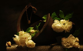 Картинка цветы, камень, розы, ракушка, натюрморт, куриный бог