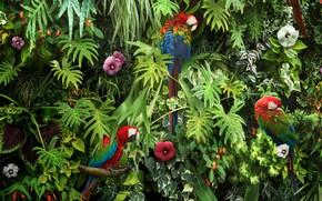 Картинка зелень, листья, цветы, птицы, ветки, природа, попугаи, разноцветные, кусты, ара, Macaw Parrots