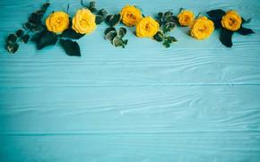 Картинка цветы, розы, желтые, yellow, wood, flowers, roses