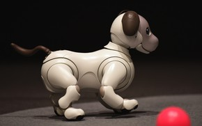 Картинка морда, темный фон, игрушка, мяч, механизм, робот, собака, щенок, профиль, вид сбоку, собачка, электроника, хай-тек, …
