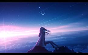 Картинка небо, девушка, закат, горы, вершина, полумесяц, by Nenogoro