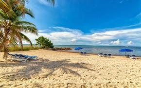 Картинка песок, море, пляж, небо, солнце, облака, камни, пальмы, берег, лодки, Флорида, горизонт, зонты, США, шезлонги, …