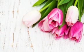 Картинка белый, стол, фон, букет, тюльпаны, нежные, розовые, wood, Olena Rudo