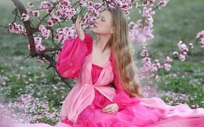 Картинка девушка, ветки, природа, весна, сакура, платье, цветение, русая, Ирина Голубятникова