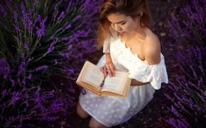 Картинка девушка, цветы, поза, настроение, платье, книга, плечо, лаванда, Денис Ланкин