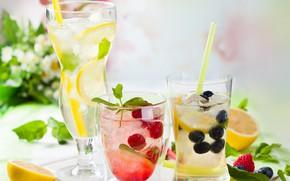 Картинка ягоды, коктейль, стаканы, напиток, цитрусы