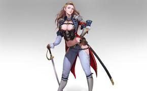 Картинка Girl, Beautiful, Art, Background, Minimalism, Sword, Saber, Pretty, Figure, Dragoon, Han Park