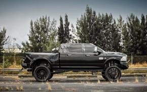 Картинка Custom, Vehicle, Dodge Ram, Off road