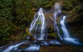 Картинка фото, Природа, Скала, Мох, США, Водопады, Panther Creek Falls, Gifford Pinchot, National Forest
