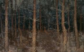 Картинка масло, картина, холст, 1907, Gustaaf van de Wall Perne, Густаф Фредерик Уолл Перн, Мистические пути