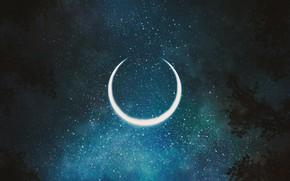 Картинка небо, деревья, ночь, полумесяц