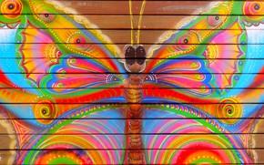 Картинка бабочка, забор, цвет, Краска