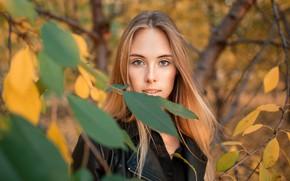 Обои осень, взгляд, листья, деревья, ветки, модель, портрет, макияж, куртка, прическа, на природе, рыженькая, в черном, ...