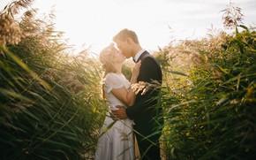 Картинка поле, девушка, романтика, поцелуй, платье, кольцо, объятия, пара, мужчина, влюбленные