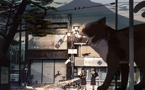 Картинка кот, кошки, девушки, улица, гигант