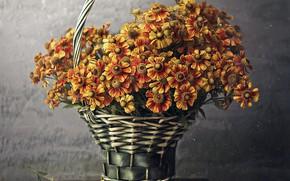 Картинка цветы, корзина, табурет, Andreeva Svoboda