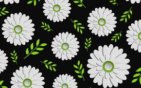 Обои цветы, текстура, черный фон, Green, Design, Colorful, Background, Leaves, Floral