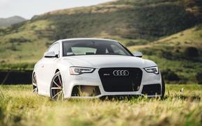 Картинка Audi, Ауди, RS5, Audi RS5