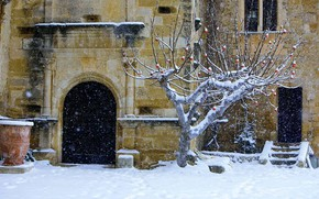 Картинка дерево, Франция, Рождество, двор, Воклюз, замок Лурмарен