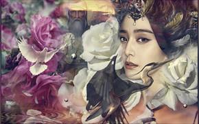 Картинка девушка, цветы, коллаж, голубь, арт, цапля
