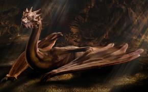 Картинка Дракон, The Hobbit, Смауг, Крылатый, Дракон Средиземья, Smaug The Golden, Огнедышащий