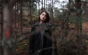 Картинка губки, в лесу, Aleks Five