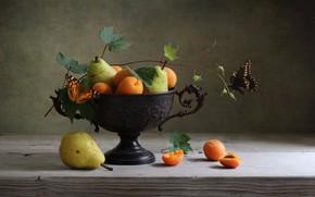 Картинка бабочка, груши, абрикосы