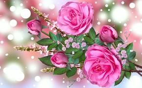 Картинка Grafika, Kwiaty, Bukiet, Roże