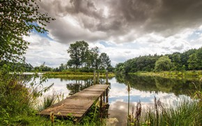 Картинка небо, трава, облака, деревья, пейзаж, природа, озеро, красота, растения, панорама