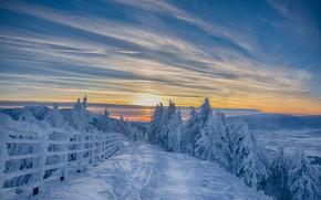 Картинка sky, trees, landscape, nature, sunset, winter, mountains, clouds, snow, fence, Romania, walkway, path, far view