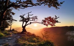 Картинка свет, горы, природа, утро