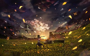 Картинка девушка, закат, поляна, пианино, желтые цветы