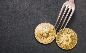 Картинка fork, coins, Cryptocurrency