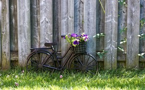Картинка wallpaper, grass, bicycle, bike, wood, flowers, basket, lawn, vintage style