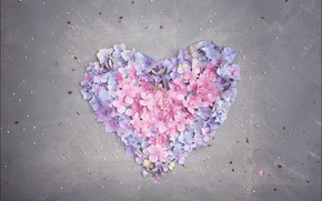 Картинка цветы, фон, сердце, винтаж, гортензия