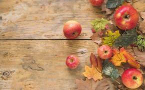 Картинка осень, листья, фон, яблоки, доски, colorful, клен, wood, background, autumn, leaves, осенние, apples, maple