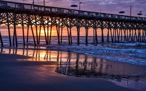 Картинка мост, берег, море, птицы, небо, закат, США