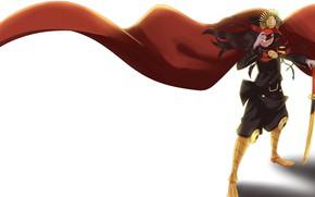 Картинка девушка, плащ, Fate / Grand Order, Судьба великая кампания