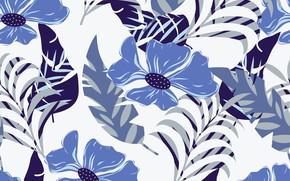 Картинка белый, листья, цветы, синий, фон