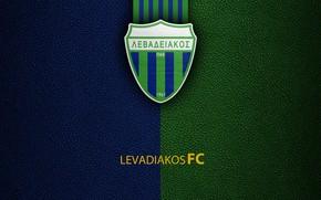 Картинка wallpaper, sport, logo, football, Greek Super League, Levadiakos