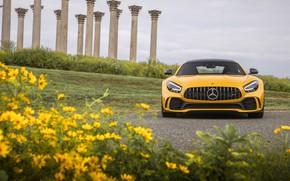 Картинка Mercedes-Benz, вид спереди, AMG, GT R, 2020