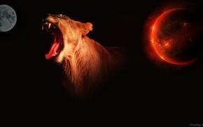 Картинка планеты, фотошоп, хищник, львица